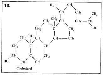ncert-solutions-for-class-11-biology-biomolecules-7