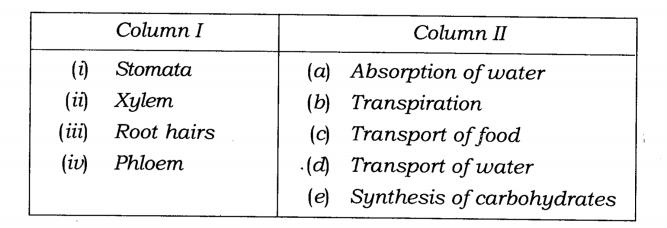 ncert-solutions-class-7-science-chapter-11-transportation-in-animals-and-plants-01