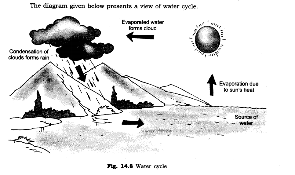 ncert-solutions-for-class-6th-science-chapter-14-water-1