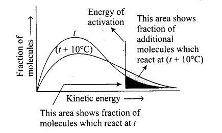 ncert-exemplar-problems-class-12-chemistry-chemical-kinetics-28