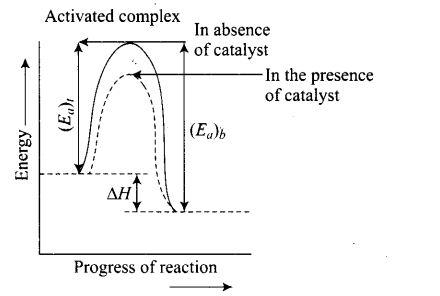 ncert-exemplar-problems-class-12-chemistry-chemical-kinetics-49