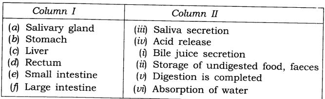 ncert-solutions-class-7-science-chapter-2-nutrition-in-animals-03