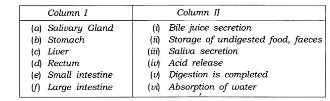 ncert-solutions-class-7-science-chapter-2-nutrition-in-animals-02