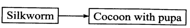ncert-solutions-class-7-science-chapter-3-fibre-to-fabric-02