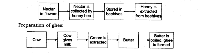 ncert-solutions-for-class-6th-science-chapter-1-food-where-does-it-come-from-l 2