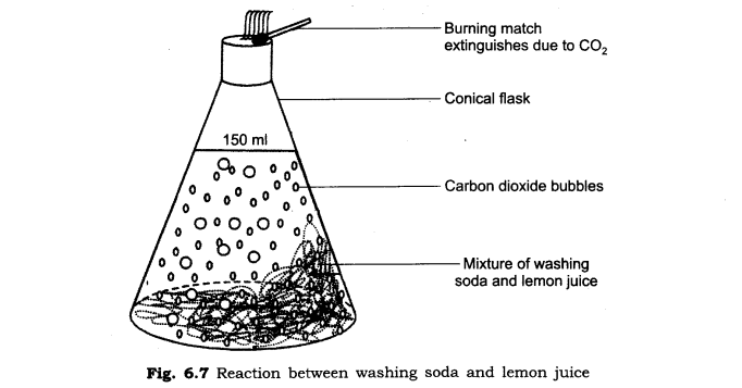 ncert-solutions-for-class-6th-science-chapter-6-changes-around-us-s 2