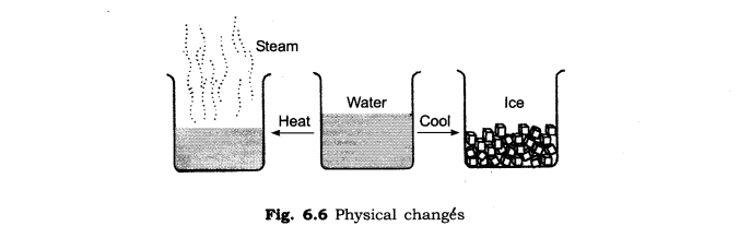ncert-solutions-for-class-6th-science-chapter-6-changes-around-us-s 1