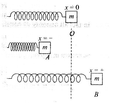 ncert-exemplar-problems-class-11-physics-chapter-5-work-energy-and-power-8
