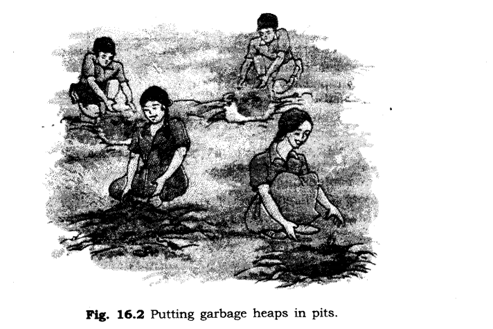 ncert-solutions-for-class-6th-science-chapter-16-garbage-in-garbage-out-1