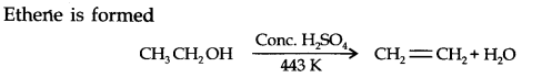 ncert-solutions-class-11th-chemistry-chapter-13-hydrocarbons-37