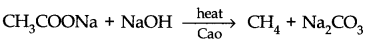 ncert-solutions-class-11th-chemistry-chapter-13-hydrocarbons-36