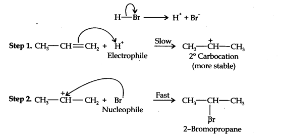 ncert-solutions-class-11th-chemistry-chapter-13-hydrocarbons-26