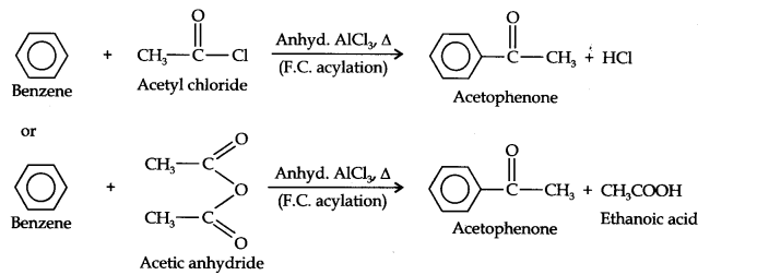 ncert-solutions-class-11th-chemistry-chapter-13-hydrocarbons-24