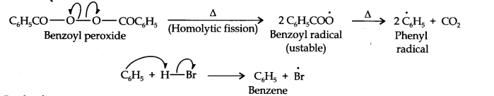 ncert-solutions-class-11th-chemistry-chapter-13-hydrocarbons-27