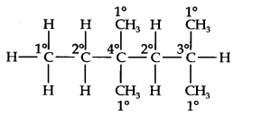 ncert-solutions-class-11th-chemistry-chapter-13-hydrocarbons-25