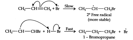 ncert-solutions-class-11th-chemistry-chapter-13-hydrocarbons-28
