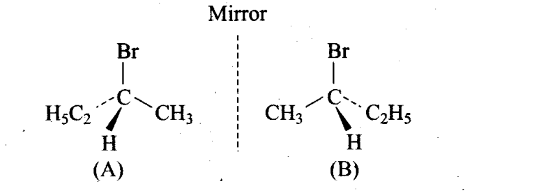 ncert-exemplar-problems-class-11-chemistry-chapter-13-hydrocarbons-6