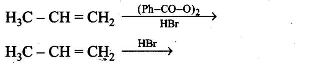 ncert-exemplar-problems-class-11-chemistry-chapter-13-hydrocarbons-42