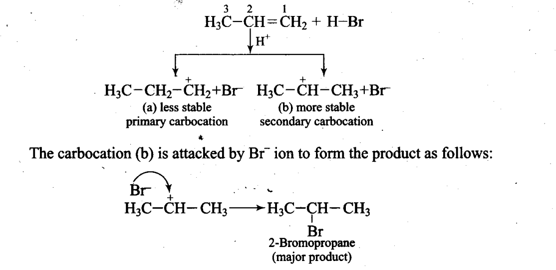 ncert-exemplar-problems-class-11-chemistry-chapter-13-hydrocarbons-43