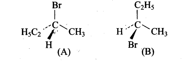 ncert-exemplar-problems-class-11-chemistry-chapter-13-hydrocarbons-4