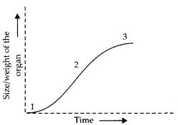 ncert-exemplar-class-11-biology-solutions-plant-growth-and-development-4