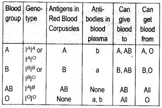 ncert-exemplar-class-11-biology-solutions-body-fluids-and-circulation-1