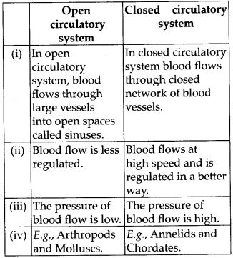 ncert-exemplar-class-11-biology-solutions-body-fluids-and-circulation-8