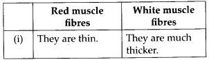 ncert-solutions-for-class-11-biology-locomotion-and-movement-4