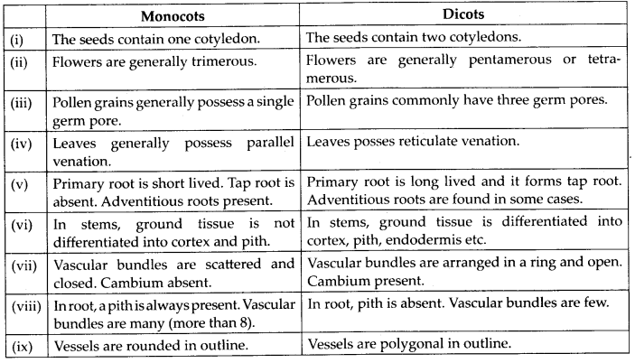 ncert-solutions-for-class-11-biology-plant-kingdom-5