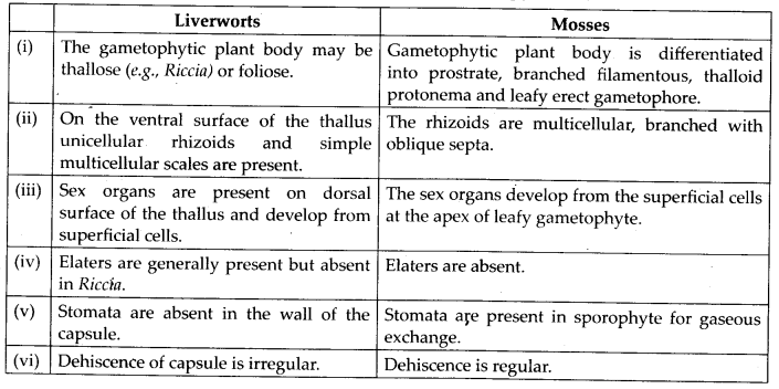 ncert-solutions-for-class-11-biology-plant-kingdom-3