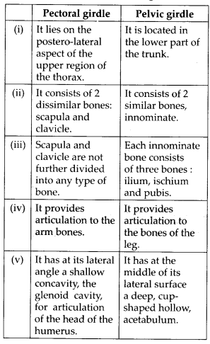 ncert-solutions-for-class-11-biology-locomotion-and-movement-7