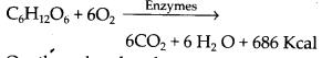 ncert-exemplar-class-11-biology-solutions-respiration-in-plants-4
