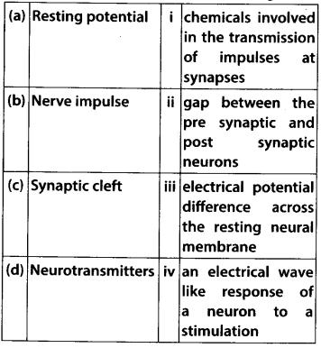 ncert-exemplar-class-11-biology-solutions-neural-control-and-coordination-4