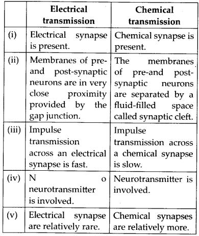 ncert-exemplar-class-11-biology-solutions-neural-control-and-coordination-5