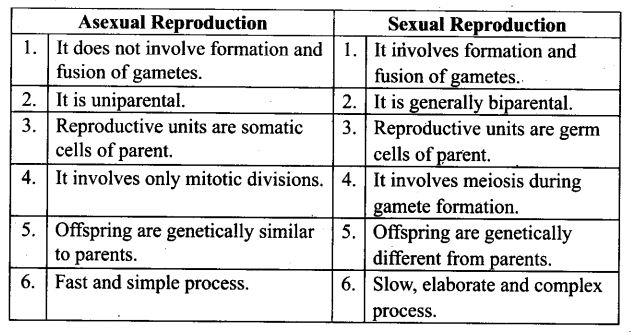 ncert-exemplar-problems-class-12-biology-reproduction-in-organisms-8