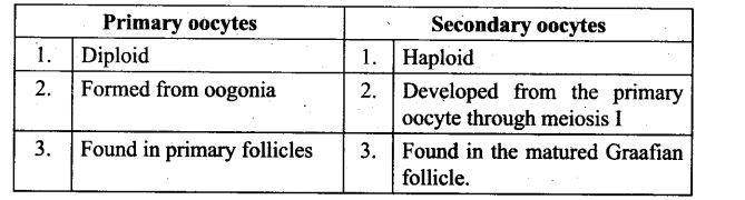 ncert-exemplar-problems-class-12-biology-human-reproduction-12
