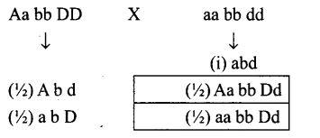 ncert-exemplar-problems-class-12-biology-principles-inheritance-variation-7