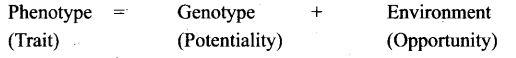 ncert-exemplar-problems-class-12-biology-principles-inheritance-variation-6