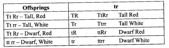 ncert-exemplar-problems-class-12-biology-principles-inheritance-variation-10