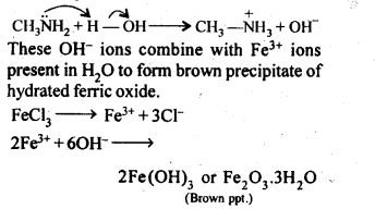 ncert-solutions-for-class-12-chemistry-amines-12