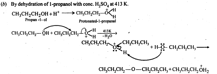 ncert-solutions-for-class-12-chemistry-alcohols-phenols-and-ether-33