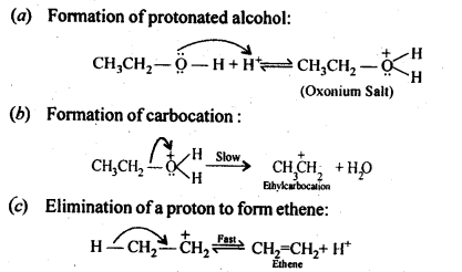 ncert-solutions-for-class-12-chemistry-alcohols-phenols-and-ether-26