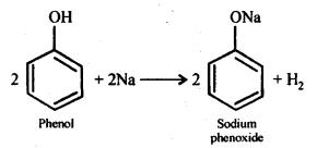 ncert-solutions-for-class-12-chemistry-alcohols-phenols-and-ether-18