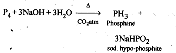 ncert-solutions-for-class-12-chemistry-the-p-block-elements-4
