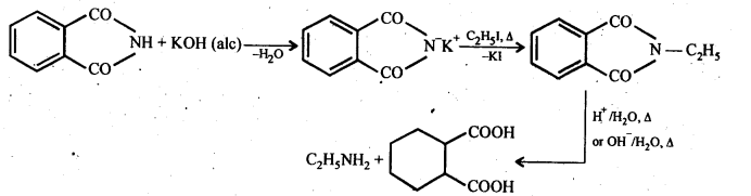 ncert-solutions-for-class-12-chemistry-amines-30