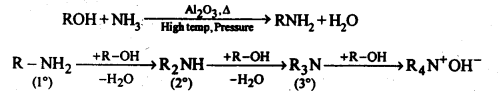 ncert-solutions-for-class-12-chemistry-amines-28