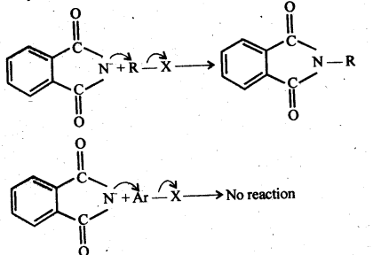 ncert-solutions-for-class-12-chemistry-amines-40