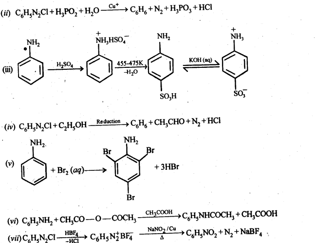 ncert-solutions-for-class-12-chemistry-amines-39