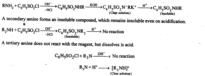 ncert-solutions-for-class-12-chemistry-amines-23