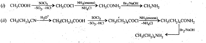 ncert-solutions-for-class-12-chemistry-amines-21